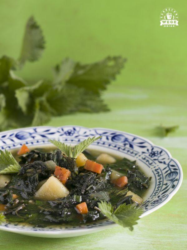 zupa pokrzywowa