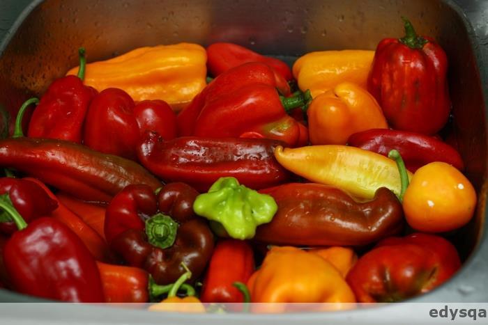 Przygotowania do zimy – pomidory i papryki