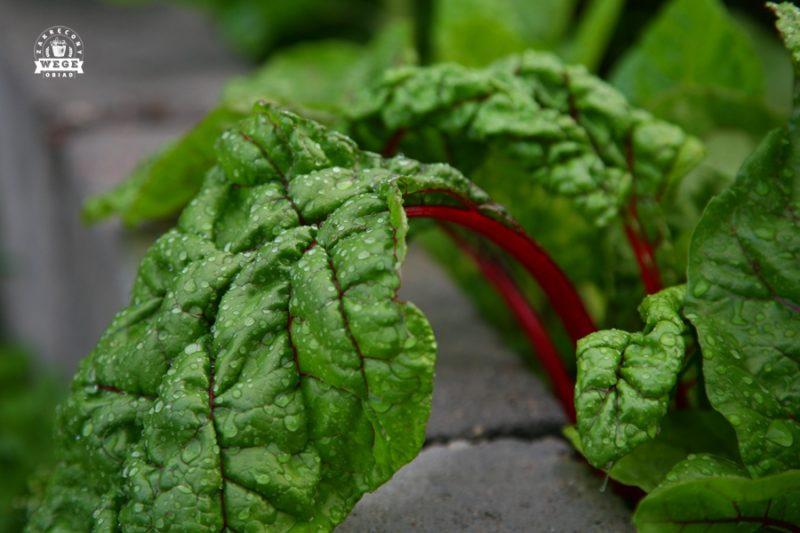2 z 10 warzyw przywracających zdrowie